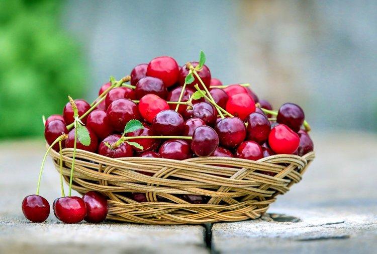 Черешня сильнее аспирина. Что нужно знать о свойствах этой вкусной ягоды?