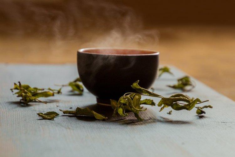 Зеленый чай содержит вещество, спасающее от страшного недуга