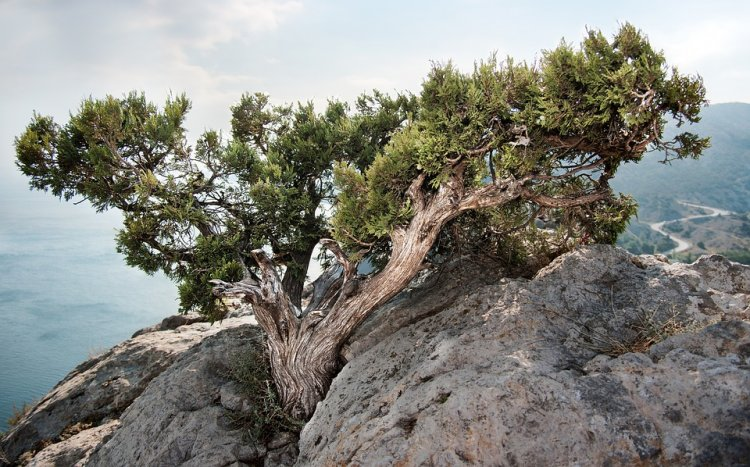 В Башкирии 64-летний турист сорвался со скалы