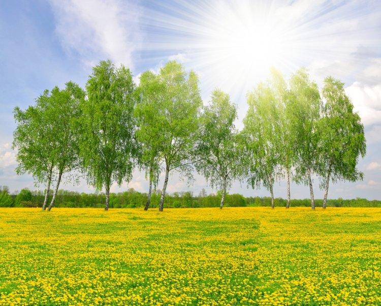 Синоптики сообщили о погоде в Башкирии 23, 24 и 25 июля