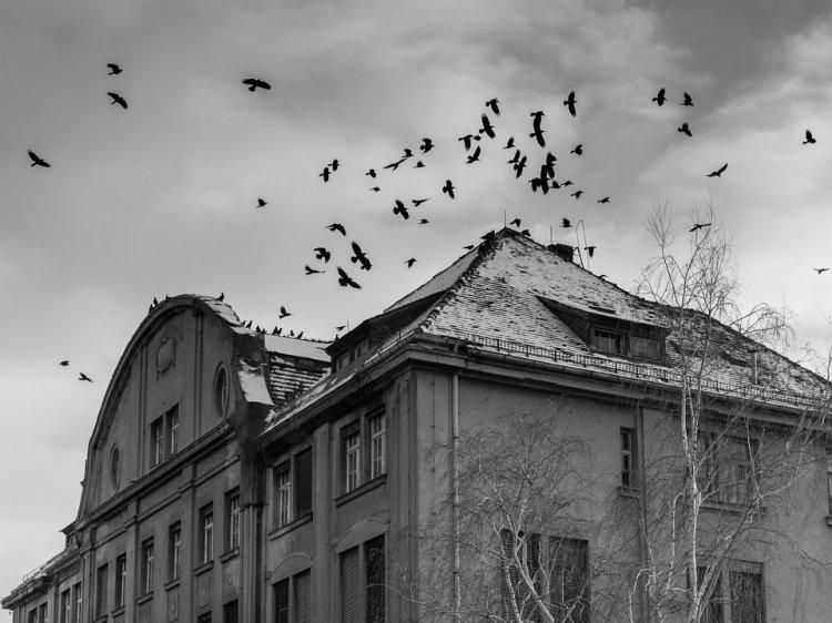 4 предупреждающих знака, что ваш дом является причиной вашего стресса и гнева