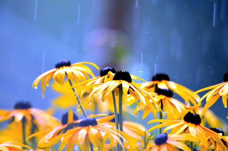 Синоптики рассказали, какая погода ожидает жителей Башкирии 10, 11 и 12 августа