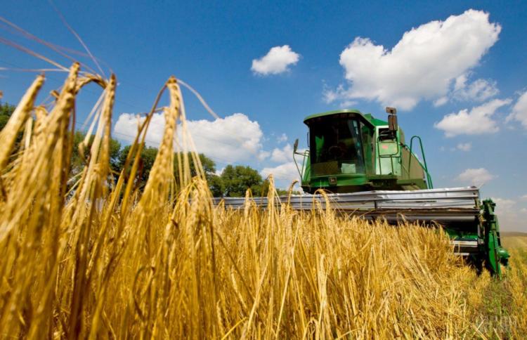 Хлеборобы Башкортостана собрали более полумиллиона тонн зерна