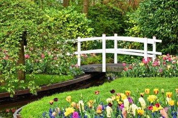17 августа в Уфе стартует День цветов