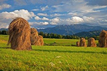 В Башкирии девочка упала со стога сена и погибла