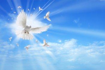 Вера, Надежда, Любовь — праздник 30 сентября 2018 года