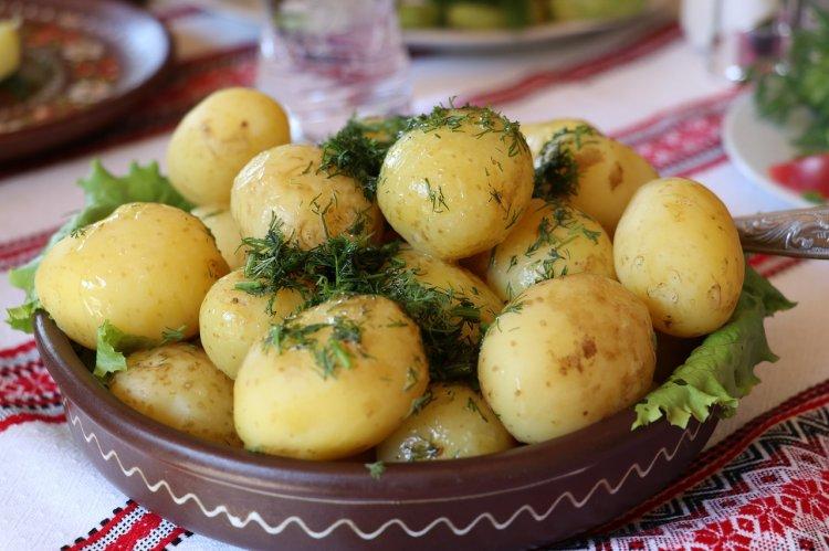 Роскачество: В картошке нашли болезни, нитраты и другие химикаты