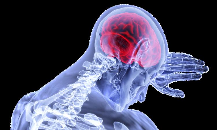 Ученые: мозг человека способен создавать воспоминания