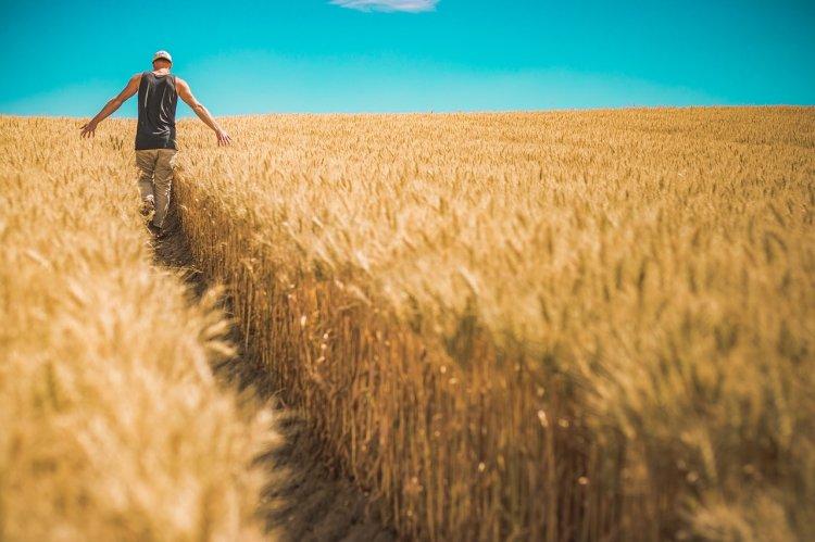 Фермеры Башкортостана смогут строить жильё на сельхозугодьях