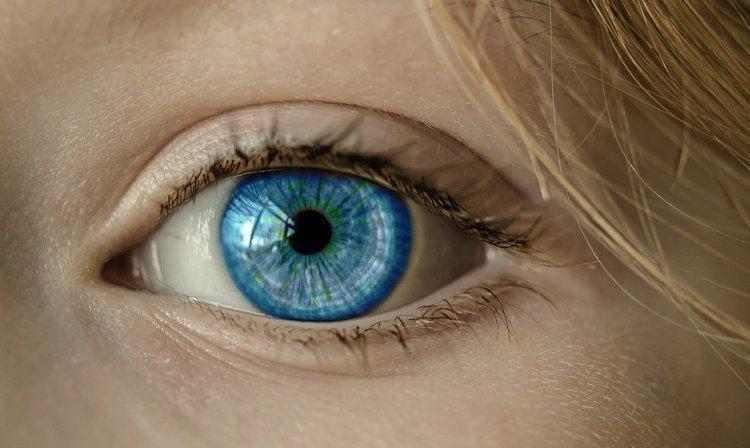 Овощи с нитратами могут защитить зрение