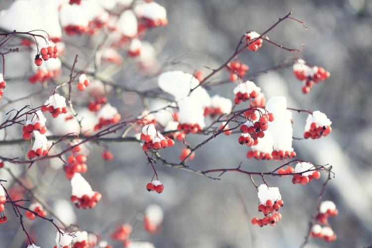 Для каких знаков Зодиака ноябрь не будет удачным, рассказали астрологи