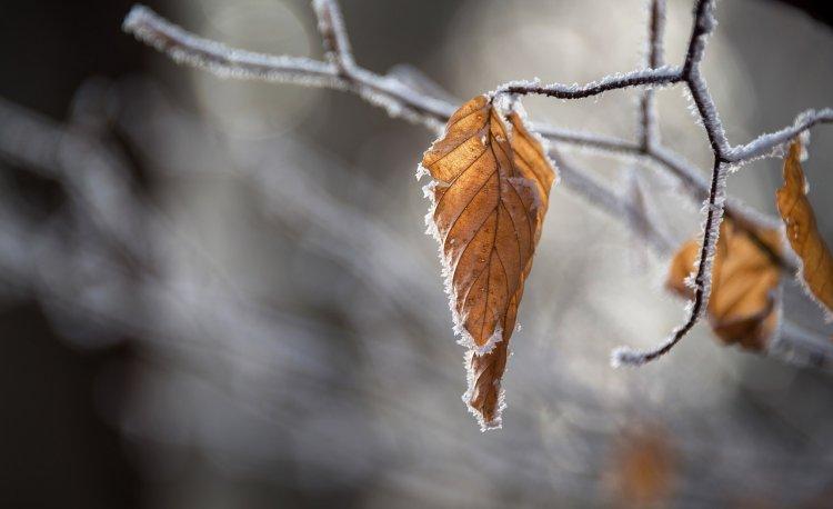 В Башкирии ожидается сильный ветер и гололедица
