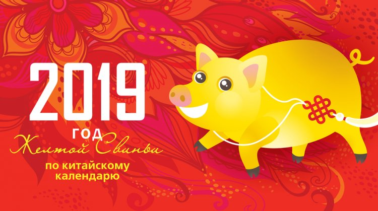 2019 год Свиньи: гороскоп для всех Знаков Зодиака