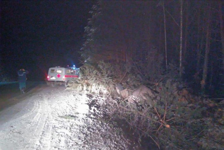 В Башкирии грузовик опрокинулся в кювет: погиб 44-летний водитель