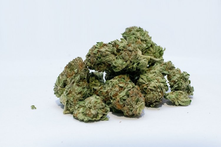 В Башкирии мужчина изготавливал из дикорастущих растений наркотики