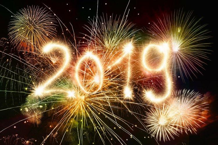 2019 год Желтой Свиньи (Кабана): характеристика иособенности