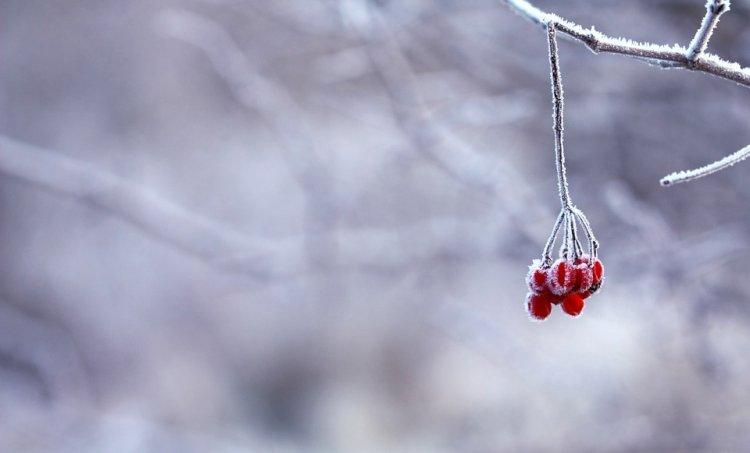 Синоптики сообщили о погоде в Башкирии 6 декабря