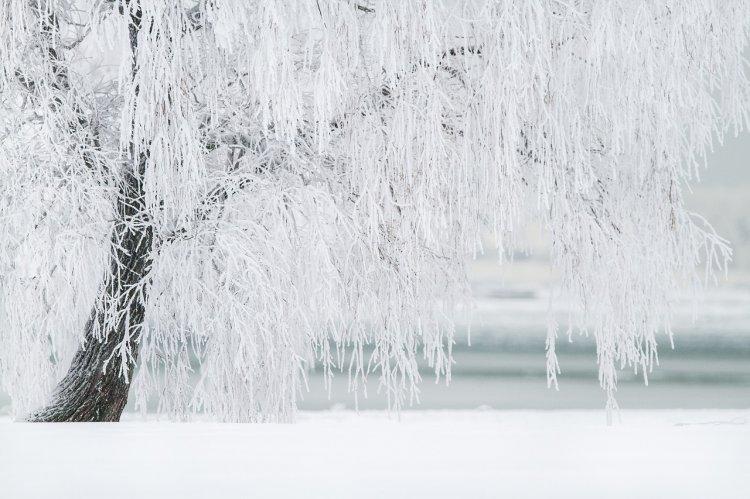 В Поволжье из-за морозов развернули более 100 пунктов обогрева