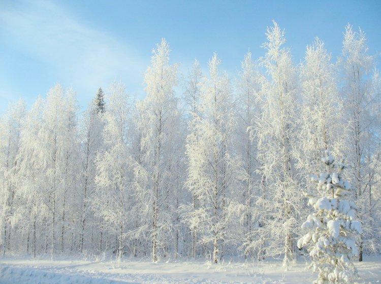 В Башкирии ожидаются сильные морозы