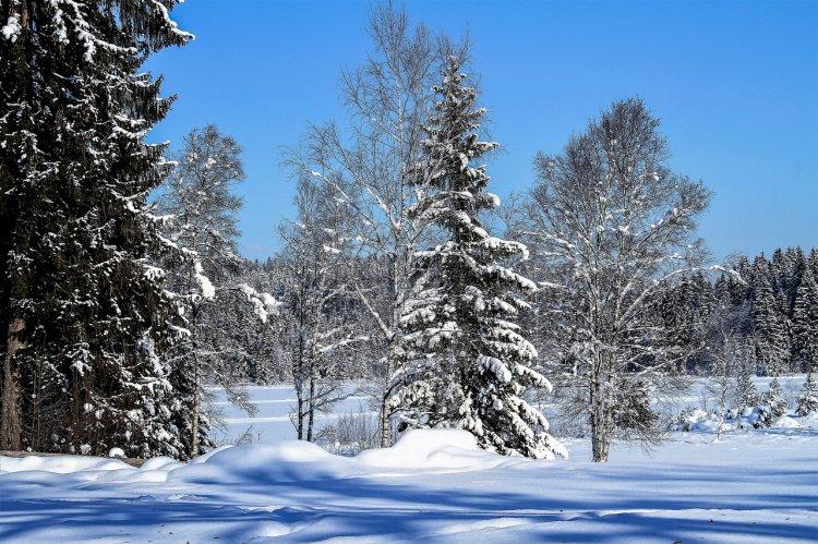 Утепляемся: в Башкирии прогнозируют похолодание