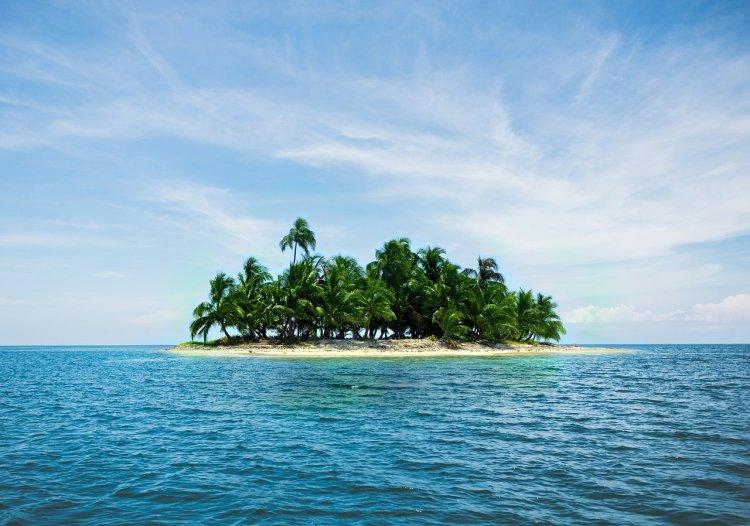 3 знака Зодиака, которые выживут даже на необитаемом острове