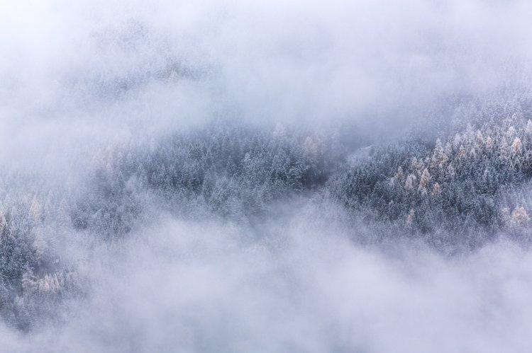 Синоптики Башкирии предупреждают о тумане