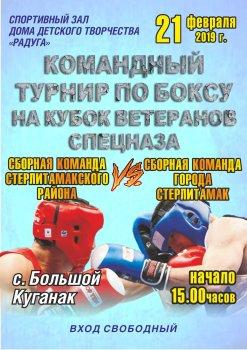 В Стерлитамакском районе пройдет турнир по боксунаКубокветерановспецназа