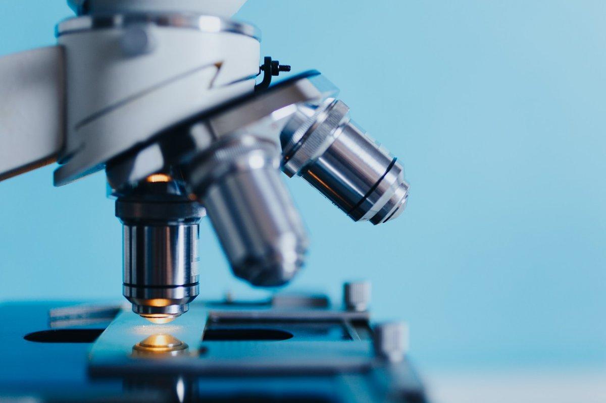Четыре команды из Уфы будут участвовать в первом турнире юных биологов