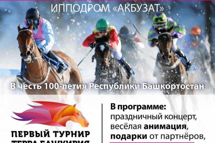 На уфимском ипподроме «Акбузат» состоится конно-спортивный турнир «Терра Башкирия»