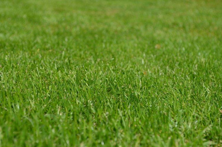 В Башкирии введут штрафы за парковку на газонах