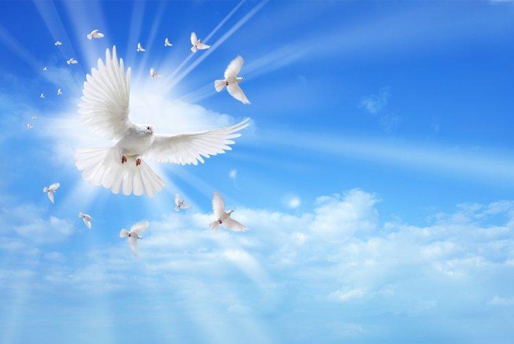 7 апреля - Благовещение: что можно и нельзя делать в этот день