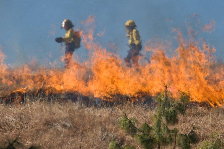 В Стерлитамаке массово горит мусор и сухая трава