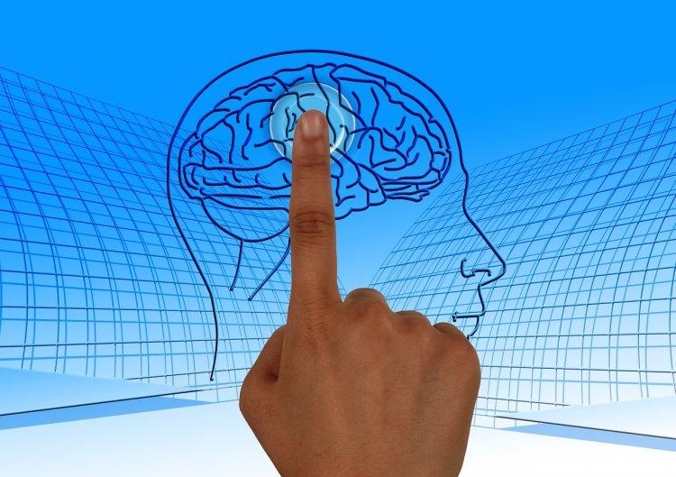 Ученые назвали самый полезный для мозга продукт