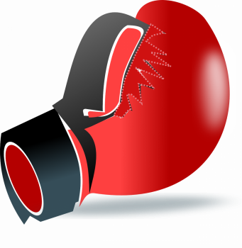 В Уфе состоится Межрегиональный турнир по боксу памяти дважды Героя Советского Союза М.Г. Гареева