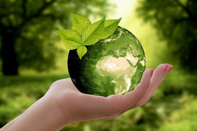 Башкортостан –лидер по массовости экологических акций в стране