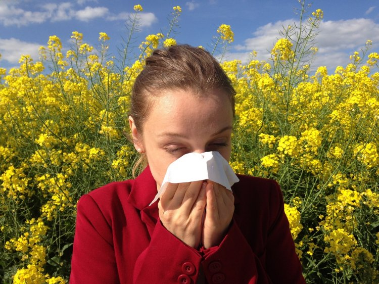 В Минздраве назвали лучшие способы борьбы с аллергией