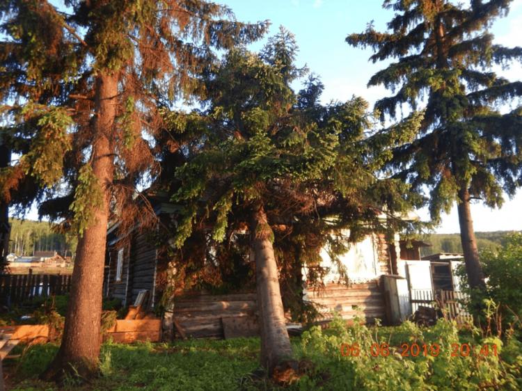 В Белорецком районе на частный дом упало дерево