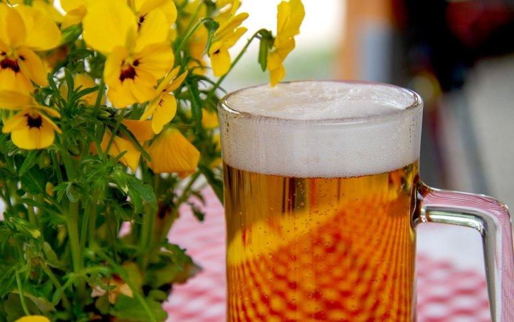 Ученые из России разработали рецепт беспохмельного пива