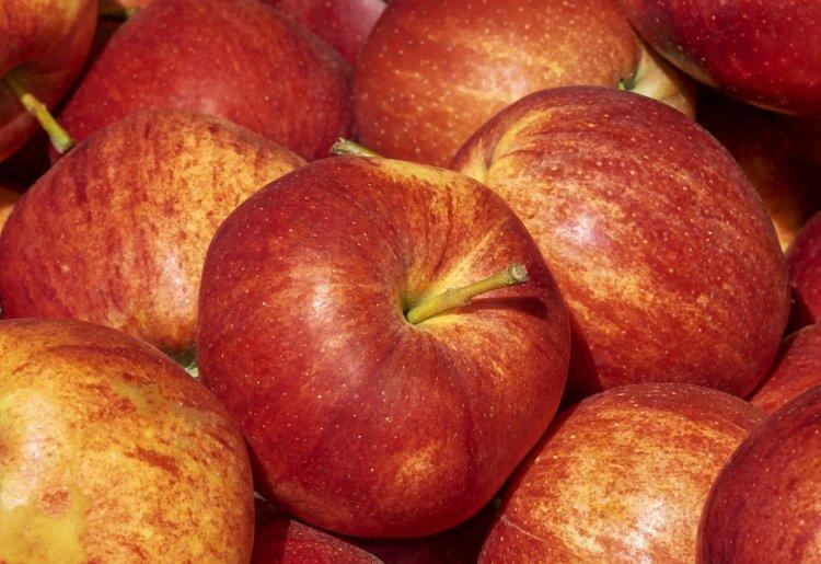 Польские яблоки уничтожили в Башкирии
