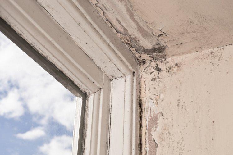 Какой ремонт в квартирах можно требовать от УК бесплатно?