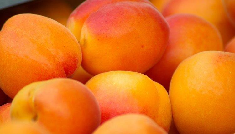 Кому нельзя есть абрикосы, рассказали врачи