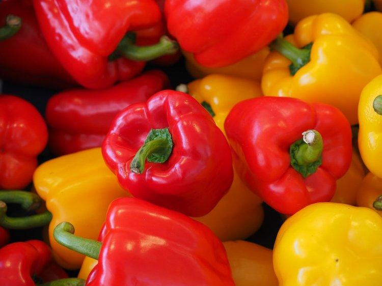Польза и вред сладкого болгарского перца: кому можно, а кому нельзя есть данный овощ