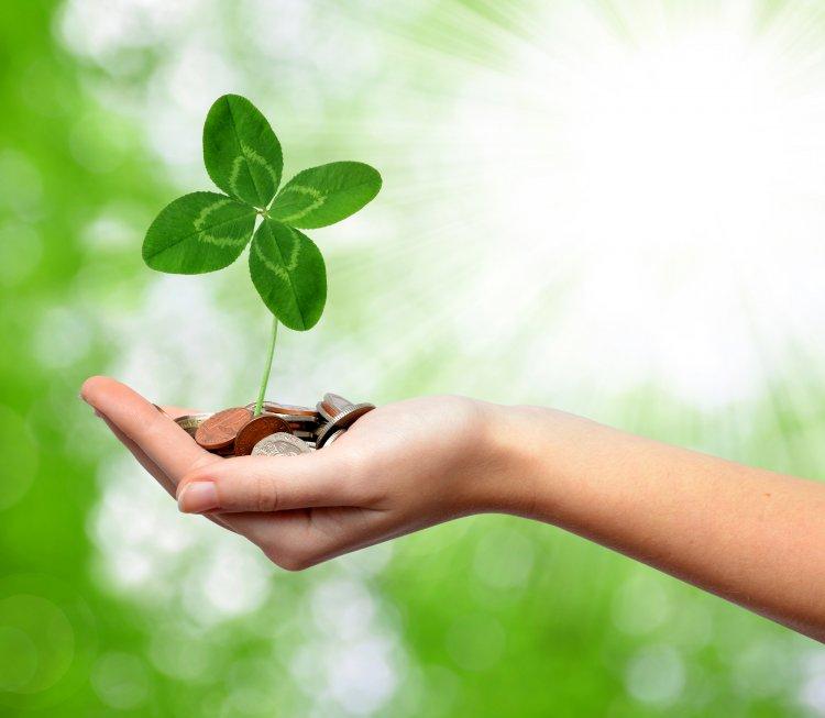 Как привлечь удачу: 4 принципа от психологов