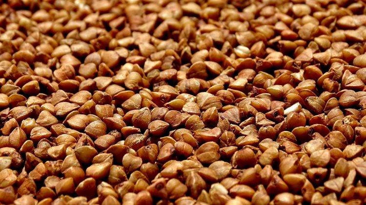 ТОП-7 полезных свойств гречки: что будет с организмом, если есть крупу каждый день