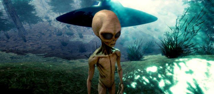 Инопланетяне посетили Челябинск: местная жительница нашла скелет пришельца на своем огороде