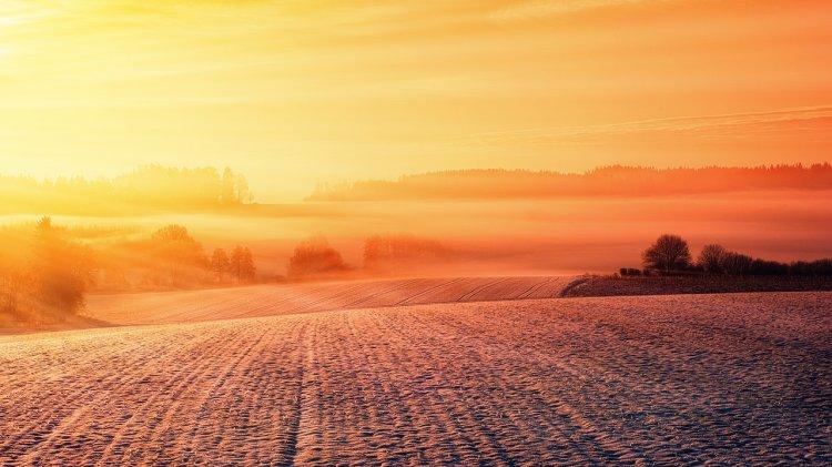 Потепление климата на 4 градуса приведет к Третьей мировой войне