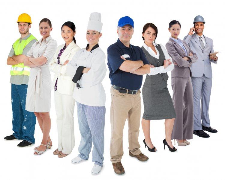 Названы самые востребованные профессии
