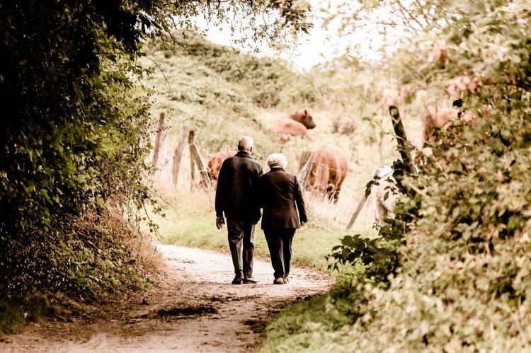 Кому из пенсионеров повысят пенсии в 2019 году?