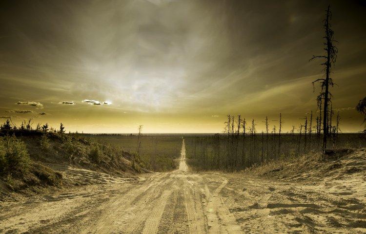 Человечество на пороге вымирания: процесс «конца света» уже запущен