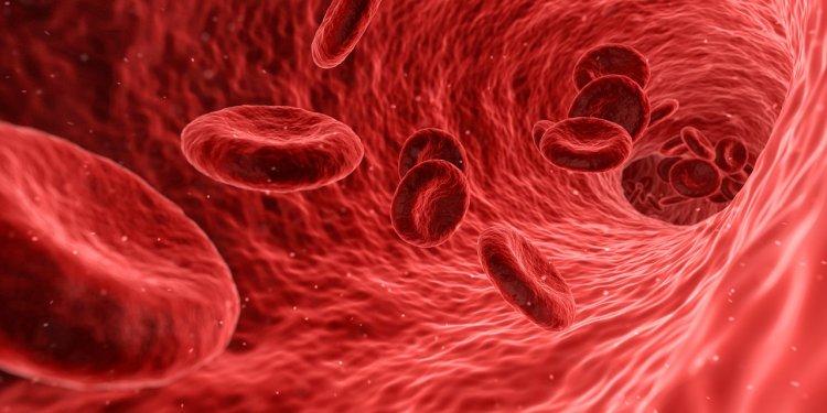 Как снизить уровень холестерина в крови: 7 простых способов